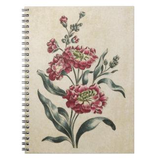 Vintage Botanical Floral Double Stock Illustration Spiral Notebook