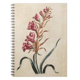 Vintage Botanical Floral Foxglove Illustration Notebook