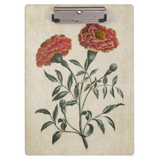 Vintage Botanical Floral French Marigold Clipboard
