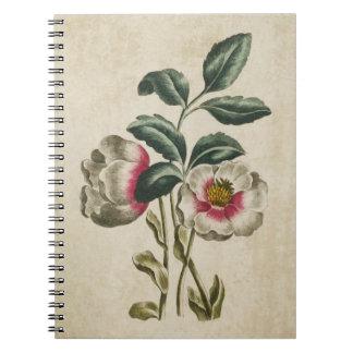 Vintage Botanical Floral Hellebore Illustration Notebook