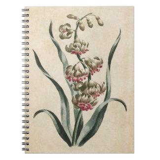Vintage Botanical Floral Hyacinth Illustration Spiral Notebook