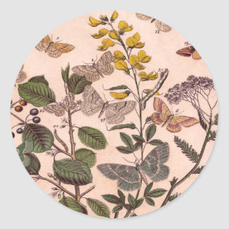 Vintage Botanical Floral Illustration Wildflowers Round Sticker