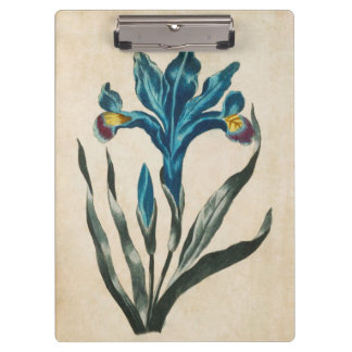 Vintage Botanical Floral Iris Illustration Clipboard