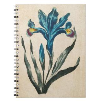 Vintage Botanical Floral Iris Illustration Notebooks