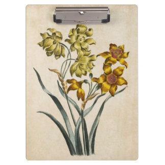 Vintage Botanical Floral Jonquil Illustration Clipboard