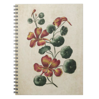 Vintage Botanical Floral Nasturtium Illustration Spiral Notebook