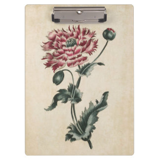 Vintage Botanical Floral Poppy Illustration Clipboard