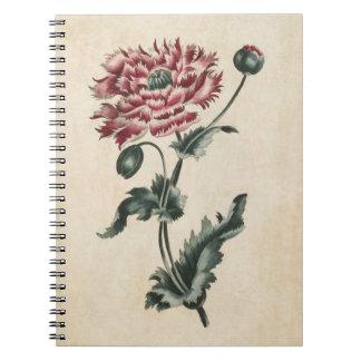 Vintage Botanical Floral Poppy Illustration Notebook