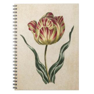 Vintage Botanical Floral Tulip Illustration Spiral Notebook