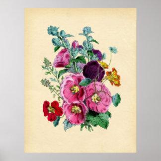 Vintage Botanical Hollyhocks -  Print