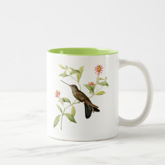 vintage botanical hummingbird wild bird coffee mug