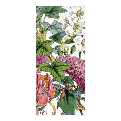 Vintage Botanical Illustrations Custom Rack Card