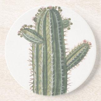 Vintage Botanical Print Cactus Coaster