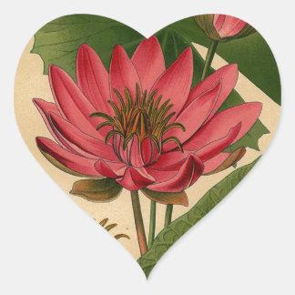 Vintage Botanical Print Pink Water Lily Lotus Heart Stickers