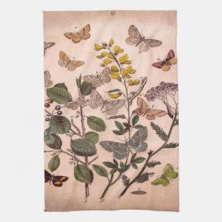 Vintage Botanical Prints Wildflowers Butterflies Hand Towels