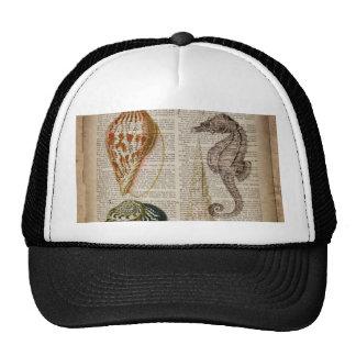 vintage botanical seahorse ocean beach sea shells trucker hats