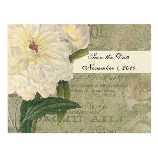 Vintage Botanical White Peony Save the Date Postcard