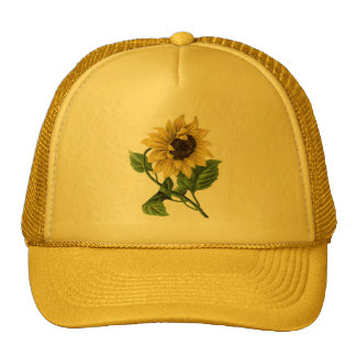 Vintage Botanicals Dandy Sunflower Trucker Hat