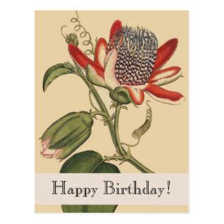 Vintage Botanicals Happy Birthday Postcard