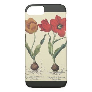 Vintage Botany, Blooming Tulip Flowers and Bulbs iPhone 7 Case