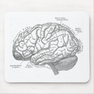 Vintage Brain Anatomy Mouse Pads