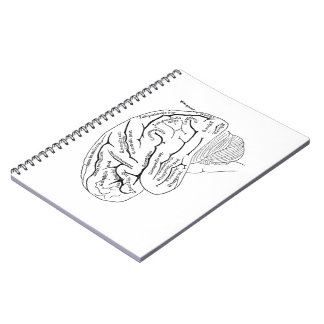 Vintage Brain Notebook