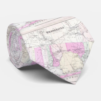 Vintage Brookhaven and Fire Island NY Map (1873) Tie