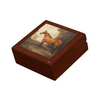 Vintage Brown Thoroughbred Horse Gift Box