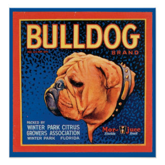 Vintage Bulldog Brand Crate Label Posters