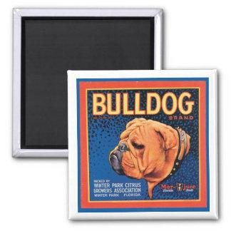 Vintage Bulldog Brand Crate Label Square Magnet
