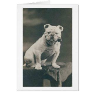 Vintage Bulldog Smoking a Pipe, Card