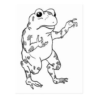 Vintage Bullfrog Illustration Postcard
