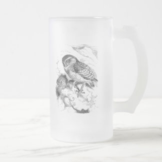 Vintage Burrowing Owl Chick Bird Illustration Frosted Glass Beer Mug