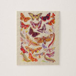 Vintage Butterflies & Moths Book Plate Puzzle