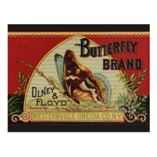 Vintage Butterfly Advertising Label Postcard