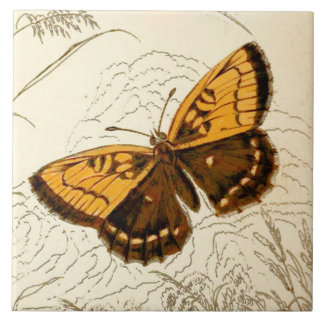 Vintage Butterfly Illustration, Gold and Brown Large Square Tile