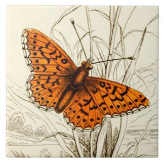 Vintage Butterfly Illustration, Orange and Black Ceramic Tile