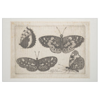 Vintage Butterfly Lepidoptera Tapestry (58) Fabric