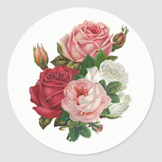 Vintage Cabbage Roses-White Background Classic Round Sticker