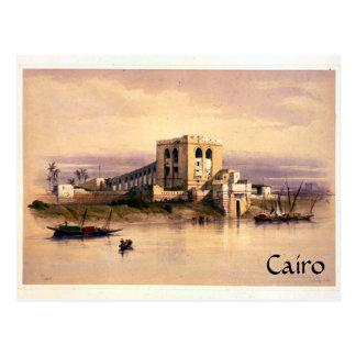 Vintage Cairo Postcard