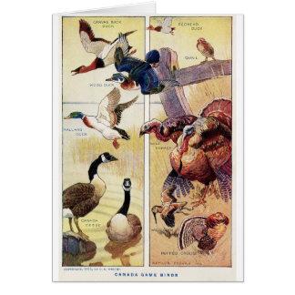 Vintage Canada Game Birds (Blank Inside), Card