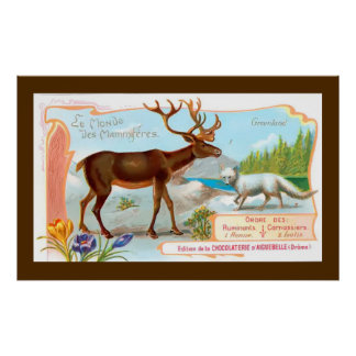 Vintage Caribou (Reindeer) and Arctic Fox Poster