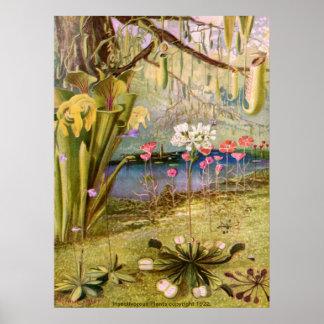 Vintage - Carnivorous Plants Posters