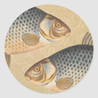 Vintage Carp Freshwater Fish Drawing Classic Round Sticker
