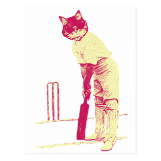 vintage cat cricketer postcard