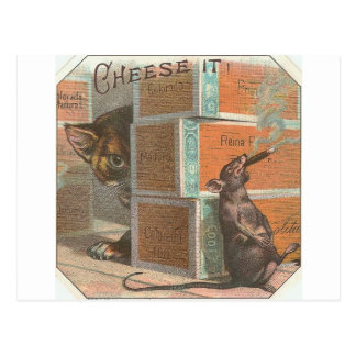 Vintage Cat Looking At Smoking Rat Postcard