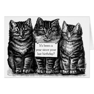 Vintage Cats Birthday Card