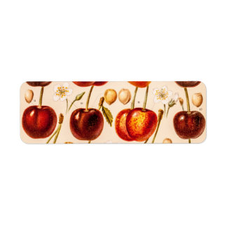 Vintage Cherry Varieties Antique Cherries Fruit Return Address Label