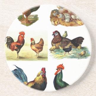vintage chickens design coaster