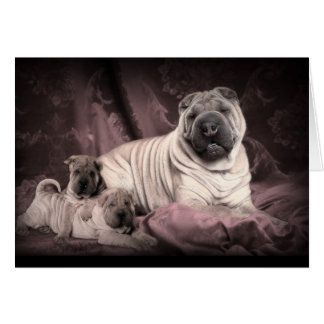 Vintage Chinese Shar Pei Wrinkles, Puppy Dogs Card